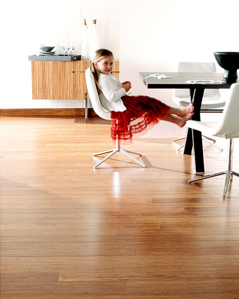 dining room, table, girl, red dress, child, bare feet, white chairs, black table /> <p>Client: &nbsp;Teragren Bamboo Flooring</p> </li> <li> <img src=